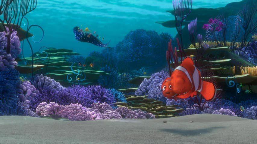 Finding-Nemo-finding-nemo-3570035-853-480